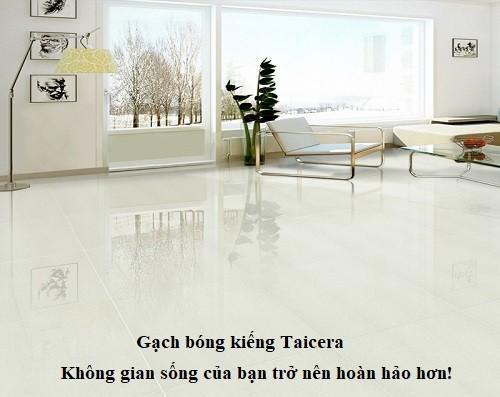 Gạch bóng kiếng Taicera là gì? Ưu điểm và TOP mẫu gạch Ấn tượng