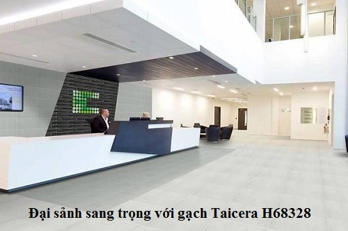 Gạch Taicera H68328