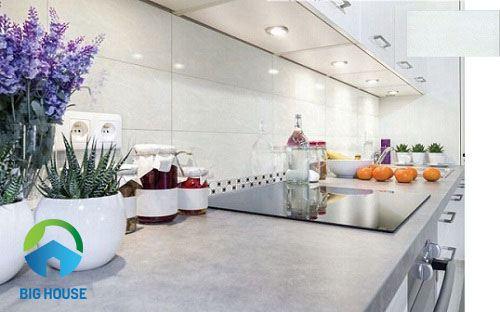 mẫu gạch ốp tường bếp taicera W63002