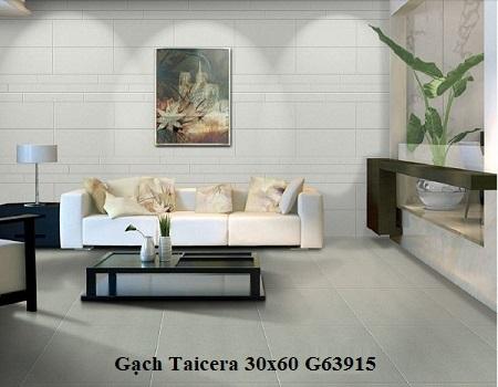 Gạch taicera G63915