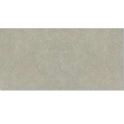 Gạch ốp tường taicera 30×60 G63992S (Hết hàng)