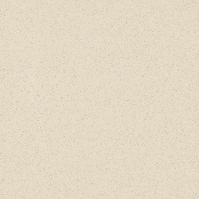 Gạch lát nền Taicera 40×40 G49005