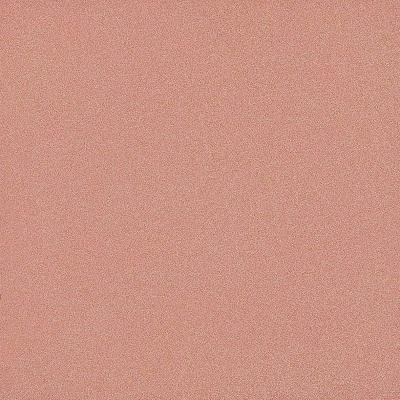 Gạch lát nền Taicera 40×40 G49033