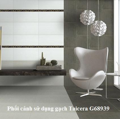 Gạch Taicera G68939