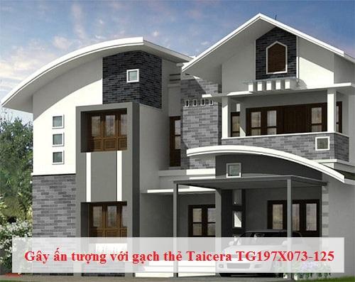 Gạch thẻ Taicera TG197X073-125