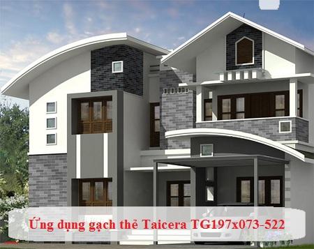 gạch Taicera TG197x073-522