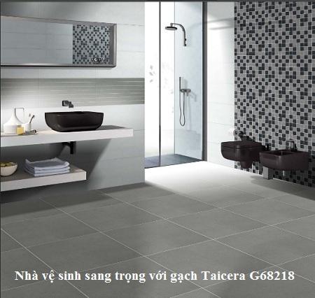 gạch Taicera G68218