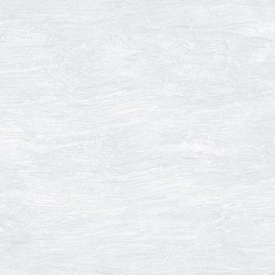 Gạch lát nền Taicera 40×40 F48902 (Hết hàng)