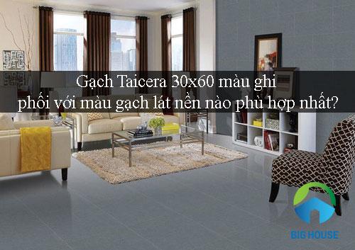 Gạch Taicera 30×60 màu ghi phối với màu gạch lát nào ĐẸP nhất?