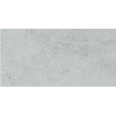 Gạch Taicera G63848 ốp tường 30×60