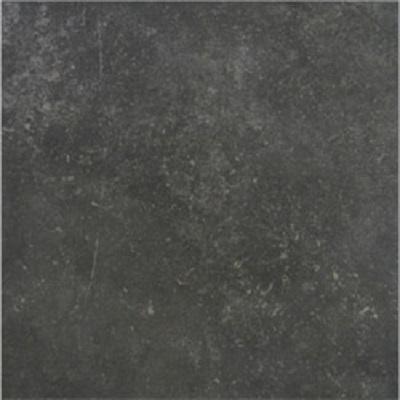Gạch lát nền Taicera 60×60 G68819