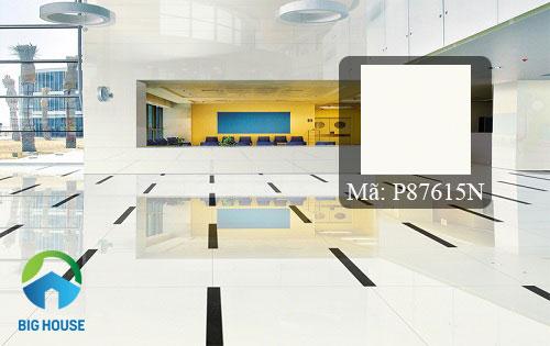 mẫu gạch bóng kiếng taicera 80x80