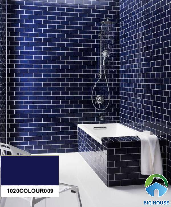Gạch ốp nhà tắm màu xanh Đồng Tâm 1020COLOUR009