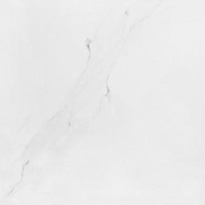 Gạch Taicera P67592N lát nền 60×60