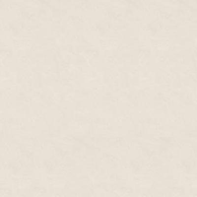 Gạch Taicera P87542N lát nền 80×80