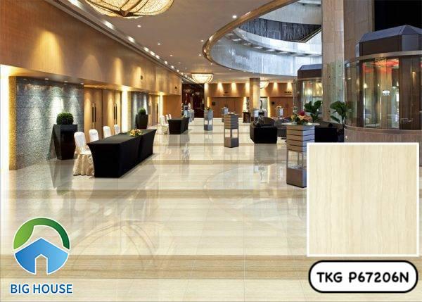 Gạch vân gỗ 60x60 Taicera TKG P67206N