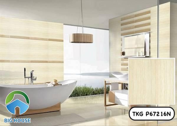 Gạch vân gỗ 60x60 Taicera TKG P67216N