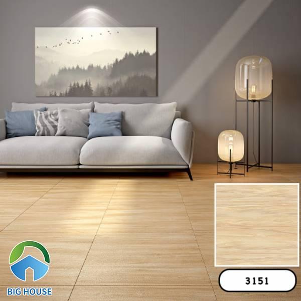 Gạch vân gỗ 60x60 Vitto 3151